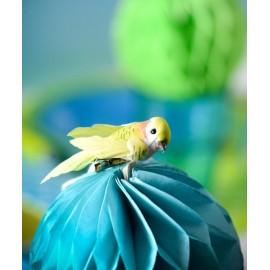 Perruche Vert Anis en plumes sur pince 6 cm les 2
