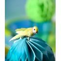 Perruches Vert Anis en plumes sur pince 6 cm les 2