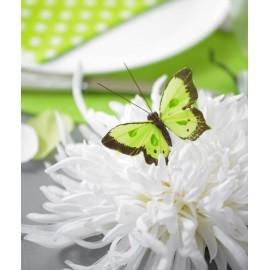 Papillons Bicolore Vert anis en Plumes sur Tige les 6