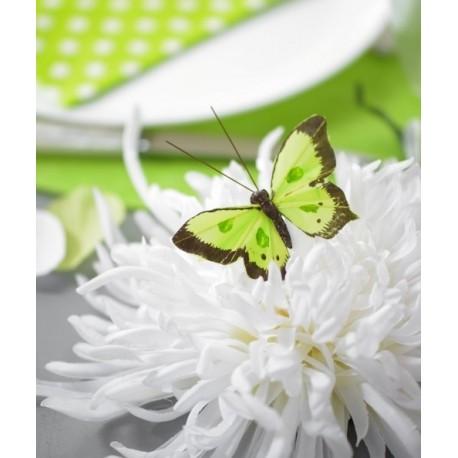 Papillon bicolore vert anis en plumes sur tige les 6