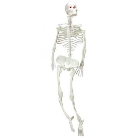Déco squelette blanc à suspendre 32 cm