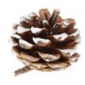 Petites pommes de pin déco effet neige 4 cm les 6