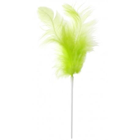 Pique plumes vert anis 8 x 14 cm les 12