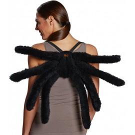 Ailes araignée adulte