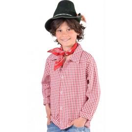 Déguisement chemise vichy rouge garçon luxe