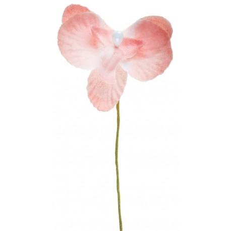 Orchidée rose sur tige les 6