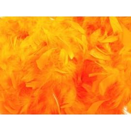 Boa Orange en Plumes 2 Mètres