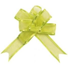 Mini Noeuds Organdi Vert Anis Les 5