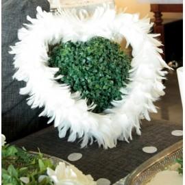 coeur blanc en plumes blanches
