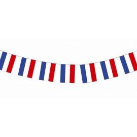 Guirlande Drapeaux Français de 20 Drapeaux 1 M