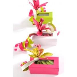 Boîte à Dragées Rectangulaire Couleur en carton les 6
