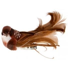 Oiseaux chocolat en plumes sur pince 6.5 cm les 4
