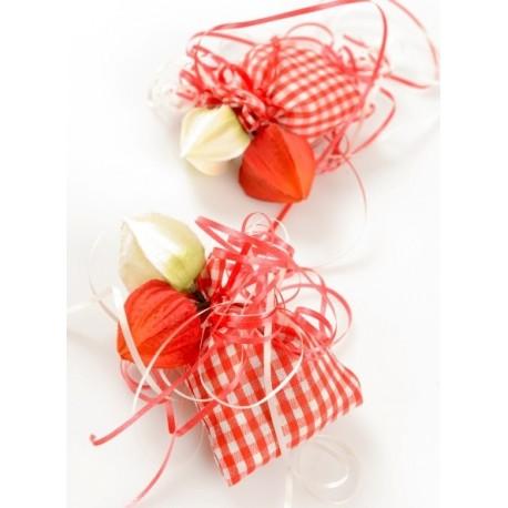 Sachet à dragées vichy rouge en coton les 6