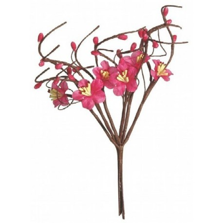 Fleurs de pommier fuchsia les 12