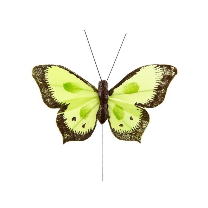 Papillon bicolore vert anis en plumes sur tige les 6 d co - Papillon sur tige ...