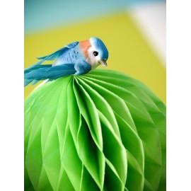 Perruche Bleu Turquoise en plumes sur pince 6 cm les 2