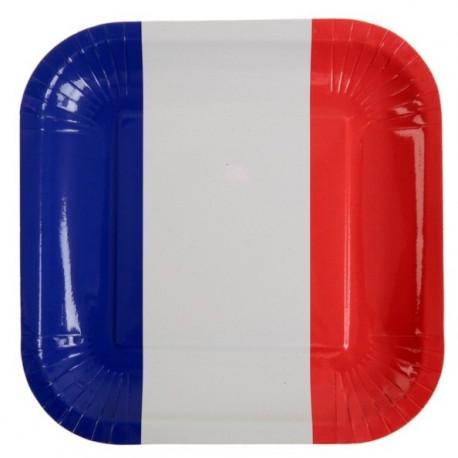 Assiette France drapeau Français carton 23 cm les 10