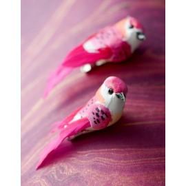 Perruche fuchsia en plumes sur pince 6 cm les 2