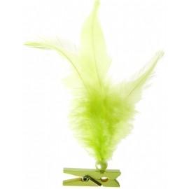 Plumes vert anis avec perle sur pince en bois les 6