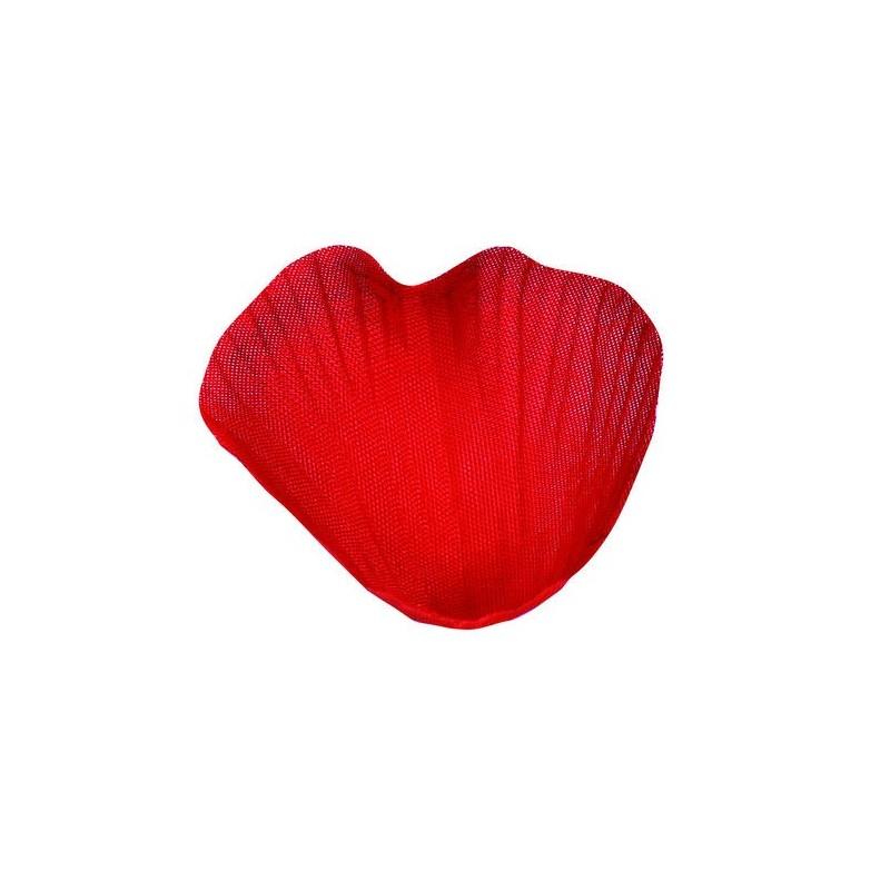 P tale rouge avec feuilles les 100 p tales de rose rouge - Petale de rose comestible ...