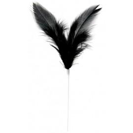 Piques plumes noires 8 x 14 cm les 12