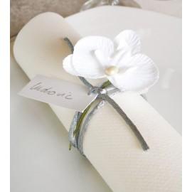 Orchidée blanche sur tige les 6