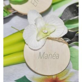 Orchidées ivoire sur tige les 6