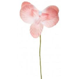 Orchidées roses sur tige les 6