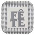 Assiettes carton Fête argent 22.5 cm les 10