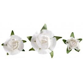 Boutons de roses blanches en papier les 20