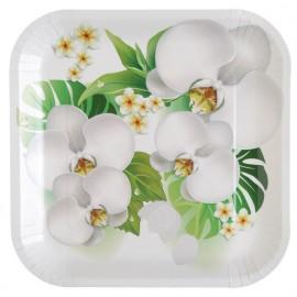 Assiette carton orchidée 23 cm les 10