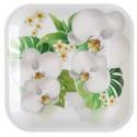 Assiettes carton orchidée 23 cm les 10
