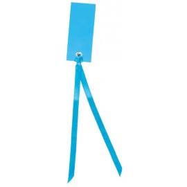 Etiquette rectangle turquoise avec ruban les 12