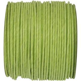 Cordon papier vert anis laitonné 20 M