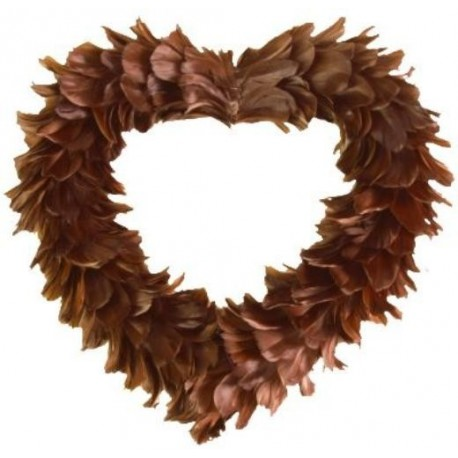 Coeur Chocolat en Plumes
