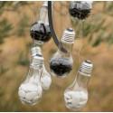 Boîtes à dragées Ampoule plexi transparent les 4