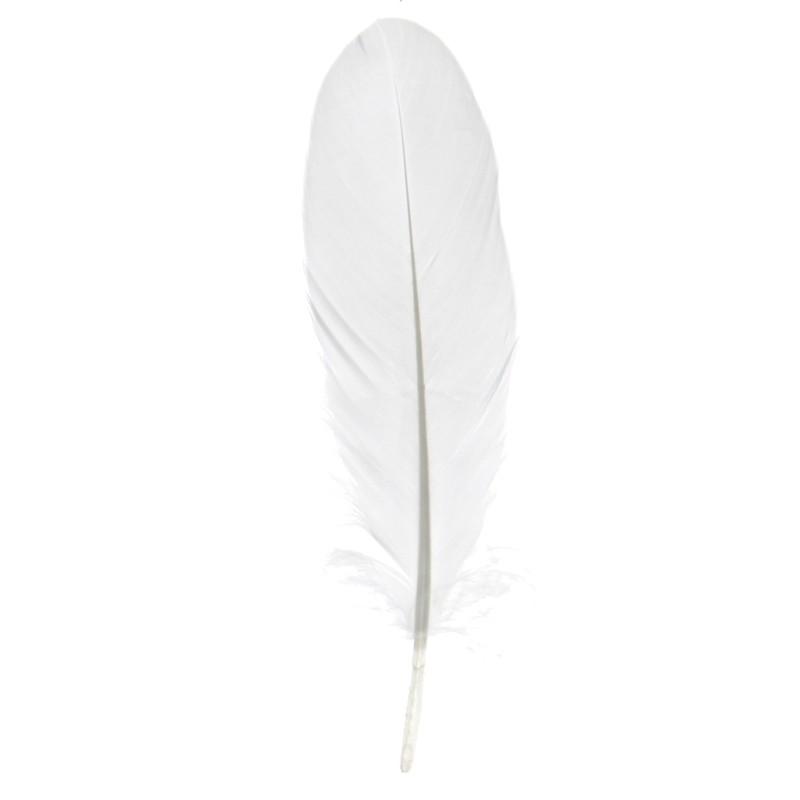 plume blanche d corative 16 cm les 6. Black Bedroom Furniture Sets. Home Design Ideas