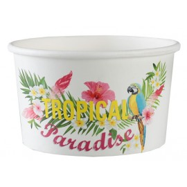 Ramequins Tropical Paradise carton les 10