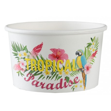 Ramequin tropical paradise carton les 10
