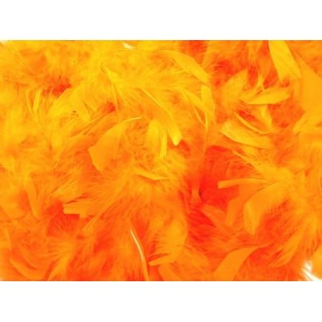 Boa Orange en Plumes