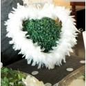 Coeur Blanc en Plumes 38 cm