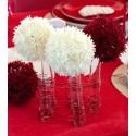 Eprouvettes en Verre Transparent 10 cm les 48