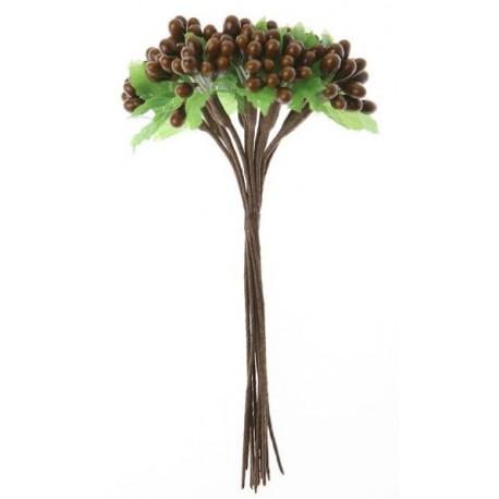 Baies Chocolat Avec Feuilles en Bouquet sur Tige les 12