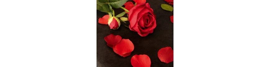 Pétales de fleur, Pétales de rose