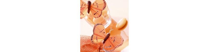 Papillon sur Tige, Papillon sur Pince ou Clip